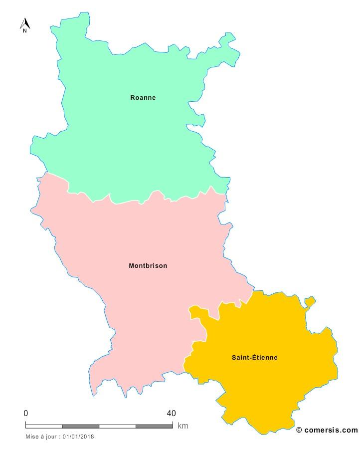 Fond de carte arrondissements 2018 de la Loire